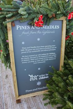 Thinking about getting your Christmas tree delivered this year? Find out all about real home delivered Christmas Trees from Pines and Needles, and get £10 off with free holly or mistletoe.