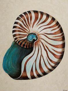 Paintings By Tracy Effinger Upton: Nautilus Shells … Seashell Painting, Seashell Art, Shell Drawing, Image Nature, Nautilus Shell, Painted Shells, Ocean Life, Beach Art, Marine Life
