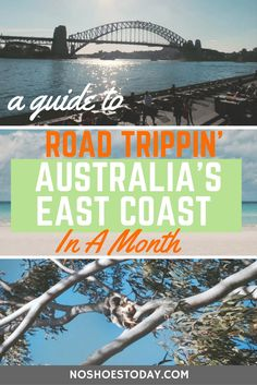 Australia's East Coast is freakin' amazing! Tajke a peep at my guide to the ultimate 1 month road trip.