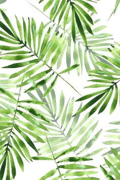 Watercolor palm leaves by gribanessa in emerald green. Beautiful summer palms p… Watercolor palm leaves by gribanessa in emerald green. Beautiful summer palms pattern available in gift wrap, wallpaper, and fabric. Bright green and. Plant Wallpaper, Tropical Wallpaper, Bathroom Wallpaper, Bathroom Art, Palm Leaf Wallpaper, Green Wallpaper, Leaves Wallpaper Iphone, Watercolor Wallpaper Iphone, Bright Wallpaper