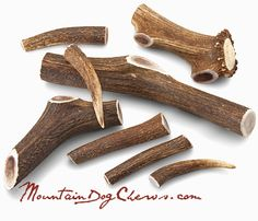 An assortment of our Grade A+ Elk Antler Dog Chews, as featured in MODERN DOG Magazine