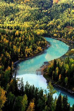 Wow!The water it's so nice.It's turquoise! The river borders Russia,Mongolia,Pakistan,Afghanistan,India, Tajikistan,Kazakhstan,Kyrgyzstan.Seriously,for touch 8 countries it's very big!  The leaves of the trees are nice with the colour of the water .
