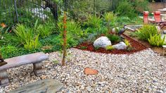 waterless landscaping ideas