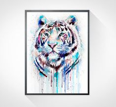 White Tiger watercolor painting print, animal illustration, animal watercolor, animals paintings, animal print, animal art, White Tiger art