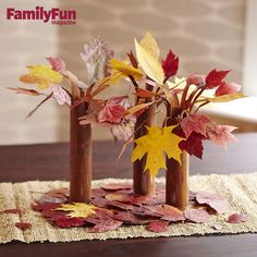 Tabletop Trees: Bring the outside in by planting a deciduous forest (with real leaves!) right on your dining room table.