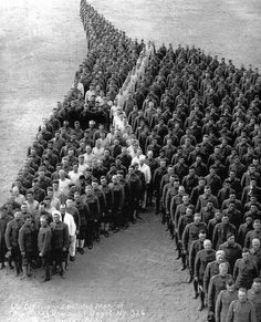 Soldiers pay moving tribute to 8 million horses donkeys and mules who died during the First World War. 1915