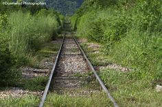 Riscoprire le ferrovie dimenticate... a piedi o in bicicletta? Voi cosa preferireste? http://www.lifeintravel.it/giornata-nazionale-ferrovie-dimenticate-bicicletta-piedi.html