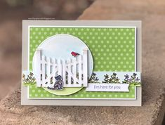 Here for you - Stampin' Connection Cat Cards, Greeting Cards, Diy Fence, Fence Ideas, This Little Piggy, Stamping Up Cards, Get Well Cards, Flower Cards, Homemade Cards