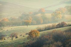 "91 Likes, 5 Comments - HIR (@razvanhir) on Instagram: ""#hir #toamna🍁 #fall #dimineata #ceata #landscape #natura #basm #fotografiaromaneasca #romanianpics…"""