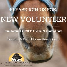Next Orientation: 2/20/2016 4:30pm We are looking for volunteers interested in becoming a part of something great. Something great that includes hands on help with our rescued horses, teamwork, education, and enjoyment. If this sounds like something you would like to become a part of, contact our volunteer coordinator: kim@fodonline.org
