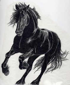 ... horse | Horse tattoo | Pinterest | Black horses Black and Horses
