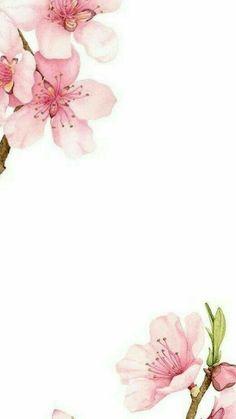 خلفيات Flower Background Wallpaper, Framed Wallpaper, Flower Backgrounds, Pink Wallpaper, Wallpaper Backgrounds, Iphone Wallpaper, Screen Wallpaper, Phone Backgrounds, Watercolor Flowers
