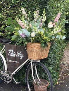 Dahlias, roses, larkspur, snaps Dahlias, Baby Strollers, Roses, Basket, Flowers, Wedding, Baby Prams, Valentines Day Weddings, Pink