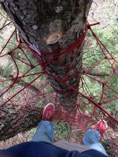 Tree Net