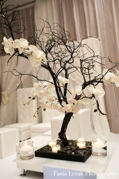 Love this, because it has the harsh branches with the soft petals and candlelight. @Christina Grace Weddings These look like mini Cherry Blossoms, :)