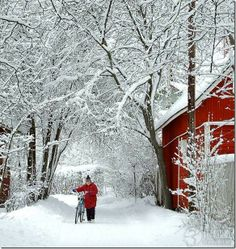 The Enchanted Home: Random pictures that I love........quaint and charming Vermont in winter.
