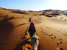 With #MoroccoDayTours, taste authentic Moroccan cuisine and take in the sights and sounds of this fascinating city. Know more @ http://www.camelsafaries.net/daytours.html