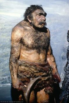 Homo neanderthalensis, An Introductory Guide. A complete summation of Neanderthals, all the details with no filler stuff. You could have Neanderthal DNA. Prehistoric Man, Prehistoric Animals, Uk History, Ancient History, Important People In History, Human Oddities, Early Humans, Human Evolution, Archaeological Discoveries