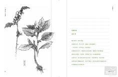 山∙城草木疏——綠活筆記 - Google 搜尋