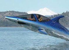 Dolphin Jet ski/boat