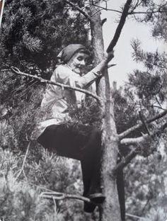 """loistava nainen!  Kuva kirjasta Asrid Lindgren - elämän kuvat. Kuvateksti: """"Ei käskyissä kielletä vanhoja ämmiä kiipeilemästä puissa"""", Astrid huutelee iloisesti maassa odottaville toimittajille. Hän on kavunnut Elsa Oleniuksen kanssa mäntyyn juhlistaakseen ystävättären kahdeksankymmentävuotispäivää."""