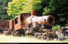 RailPictures.Net Photo: Cass Scenic Railroad Climax at Cass, West Virginia by Steve Hammer