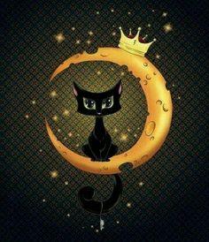 Luna e il gatto
