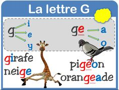 orth : la lettre G French Language Lessons, French Language Learning, French Lessons, French Teaching Resources, Teaching French, French Education, French Expressions, French Classroom, Letter Sounds