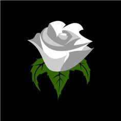 Graphic Design of Flower Clipart - White Rose with Black Background