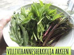 Hortahakkelus on herkku jonka teet todella helposti Fodmap, Spinach, Herbalism, Cabbage, Cooking Recipes, Vegan, Vegetables, Health, Food