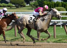 Tap To It- promising 2 year old filly maiden winner at Saratoga