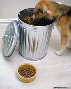 Keep pet food in clean metal garbage cans with tight fitting lids