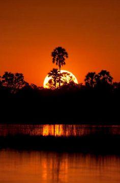 A burning sunset in the Okavango Delta, Botswana