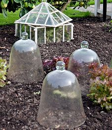 Protecting plants in the ground for the winter -- Canadian Gardening