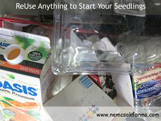 ReUse Anything to Start Your Seedlings