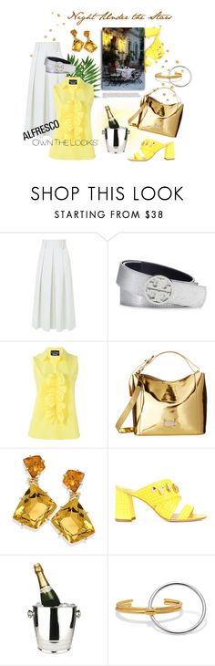"""""""Night Under the Stars"""" by gilleyqwyn ❤ liked on Polyvore featuring TIBI, Tory Burch, Boutique Moschino, Frances Valentine, Polly Plume, Winco, Charlotte Chesnais and alfrescodining"""