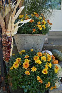 Decorating a small porch for fall.   chatfieldcourt.com