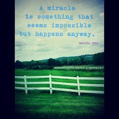 Miracles #mib3 #mib #quotes #miracles #instadaily #picoftheday #etsy #hot #my #picoftheday #instamood #beautiful #earth #nature #freespirit #optimism #photogrid #loveher