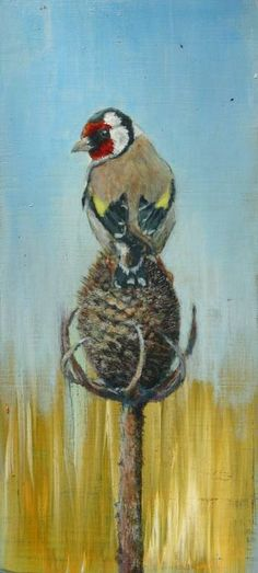 Goldfinch & teasel