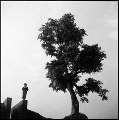 Panchiao, Taiwan,1960. Chang Chao-Tang