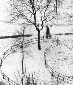 Andrew Kertesz, Washington Square Day (1952)