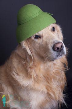 El Rey Kumita con sombrero de fieltro de MiMeroYMiSombrero // Kumita King wearing MiMeroYMiSombrero felt hat