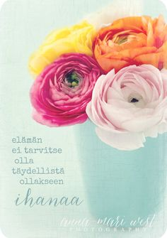 Elämä Cool Words, Wise Words, Diy Presents, Texts, Flora, Poems, Messages, Thoughts, Feelings