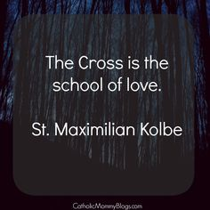 St. Maximilian Kolbe saint quote and reflection on the Catholic website: The Cross is the school of love