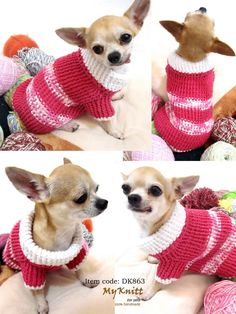 Chihuahua Puppies Clothes On Stylish Fuchsia Pink DK863