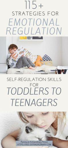 self regulation skills