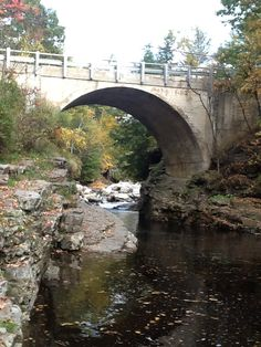 1000 Images About Things To Do In And Round Middlebury Vermont On Pinterest Vermont Otter