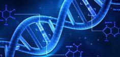 Biology DSC Website