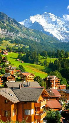 Google+ Switzerlan Alps