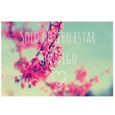 Imagen vía We Heart It https://weheartit.com/entry/168219155/via/11585254 #amor #flores #teamo #tu #vida #miamor #soloquieroestarcontigo